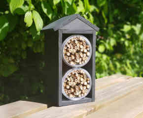 BUILD A BEE HOUSE